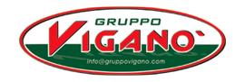 Gruppo Viganò